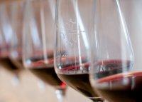 Ecole des vins de l'AOC Languedoc