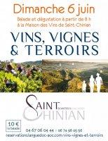 Vins vignes et terrois 2021 saint chinian