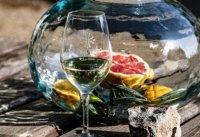 Découverte vins blancs